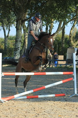 IMG_4895 (Bas & Emily) Tags: horse horses horsejumping jump jumping rijden paard paarden springen springwedstrijd sport belleepoque hindernis