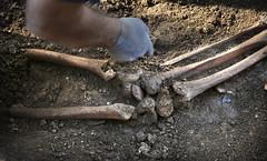 Exhumación Torés (Lugo) (8)