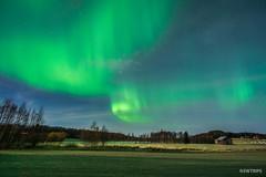 Aurora over Lovanger - Lovanger, Sweden-2.jpg (SWTRIPS) Tags: swtrips aurora sweden roadtrip long exposure night photography lovanger scandinavia longexposure nightphotography