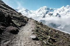 Zermatt 22 (jfobranco) Tags: switzerland suisse valais wallis alps zermatt gornergrat cervin matterhorn