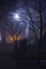 (jaysonphoto) Tags: fog portland evening pdx nwportland oreogn
