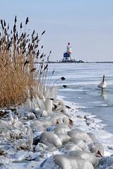 winter memories (leuntje) Tags: winter lighthouse snow ice netherlands frost vuurtoren marken ijsselmeer noordholland waterland frozenlake markermeer gouwzee hetpaard hetpaardvanmarken