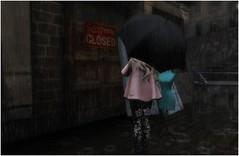 Rainy Days & Mondays (Lavcat Chandler) Tags: rain umbrella alleys magika rainydaysmondays pixicat {whatnext}