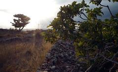 2014.Menorca.Santa agueda 089 (joseluisgildela) Tags: paisajes menorca islasbaleares
