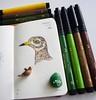 Little Bird (Milagritos9) Tags: pájaro makers birdportrait birddrawing alittlebirdtoldme minisketchbook birdjournal moleskineartpages artistillustratedjournal birdmoleskine