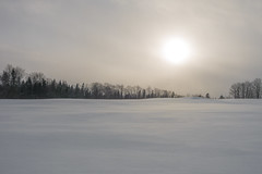 Vermont winter field (Benoit Liard) Tags: winter landscape vermont sony hiver side country neige campagne rx100 rx100m3