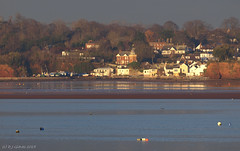 Across the water (ExeDave) Tags: uk winter red england cliff buildings woodland river landscape sandstone village harbour january cliffs estuary clocktower coastal devon shore gb sw lowtide spa mudflats tidal buoy sandbank waterscape exe starcross 2015 eastdevon lympstone sigma135400mm sssi ramsarsite p1215439