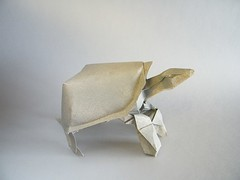 Tortoise - Nguyen Hung Cuong (Rui.Roda) Tags: origami turtle tortoise tortuga papiroflexia tartaruga tortue hung nguyen cuong papierfalten