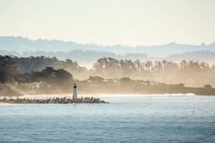 Santa Cruz California (Kathy~) Tags: santacruz california winter people lighthouse fog thepinnaclehof tphofmarch2015 instagram