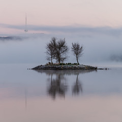 Lake Burley Griffin || Canberra (David Marriott - Sydney) Tags: parkes australiancapitalterritory australia au lake burley griffin island reflection fog foggy black mountain tower telstra