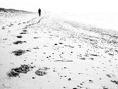 Footprints in the sand ... (martina.stang) Tags: beach dunes seashore sea highkey highcontrast footprints shells person solitude serene traces footprintsinthesand hss