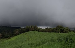 Pos (elisecavicchi) Tags: slope treeline cloud formation foreboding dark looming storm rainstorm rain shadow horizon lifting green brilliant countryside rural poas central america costa rica ngc