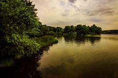 Curvature (david_sharo) Tags: landscape trees davidsharo moraine polarizer pennsylvania wideangle lake water waterscape sky