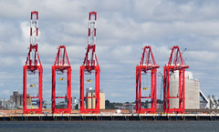 Cranes (The Crewe Chronicler) Tags: cranes crane docks dock liverpool liverpool2 mersey rivermersey river newbrighton wirral thewirral canon canon7dmarkii