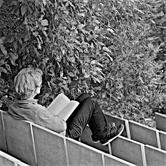 Reading at the garden (pedrosimoes7) Tags: street people blackandwhite bw portugal reading blackwhite women gente reader lisbon books cc creativecommons streetphoto mulheres livros pretoebranco personnes livres femmes lecteur lendo leitor gentedeportugal lisant fotoderua streetpassionaward blackwhitepassionaward passionbw caloustegulbenkianfoundationgarden