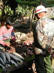 Kalaw (simo2582) Tags: people asian asia burmese shanstate shan birma birmania burma myanmar market kalaw human trade typical hilltribes tribes mountain hillstation village countryside travel reise blick unterwegs world traditional 5daysmarket groceries street soldier man fish