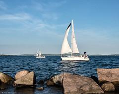 Sailboats head to the finish line, New Suffolk (wagga9) Tags: depthoffield northfork newsuffolk