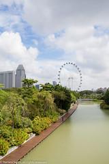 Gardens by the Bay (Harlani Salim) Tags: singapore gardensbythebay singaporeflyer