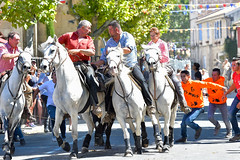 Abrivado_Voto_2016-23 (amcadweb) Tags: fontvieille camargue taureau fte