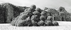 Balls (Richard Brothwell) Tags: pevenseycastle stones balls catapult canonefs1022mmf3545usm efs1022mmf3545usm