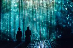 Curtain Call II ({Laura McGregor}) Tags: ronarad curtaincall roundhouse london art installation light show lights beams neon shadow silhouette curtain fuji fujifilm xpro2 vsco vscofilm grossisolevel