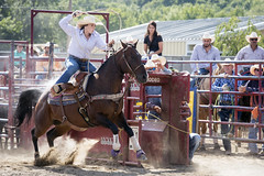 Rodeo cowgirl (mattijs v) Tags: rodeo cowgirl hot concentration focus horse jumpingoutofsaddle