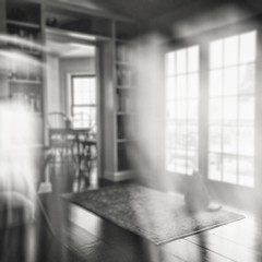 snow day (winnie's human (all work and no play)) Tags: bw blur cat square doubleexposure artsyfartsy artlibre