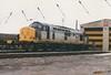 "Transrail Branded Class 37/5, 37683 (37190 ""Dalzell"") Tags: tractor warrington depot growler bigt class37 class375 37683 triplegrey transrail arpley trainloadfreight"