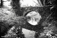 Vathyrema (kzappaster) Tags: bridge bw reflection sony greece vivitar a7 larissa stonebridge 19mm thessaly aghia mirrorless vivitar19mmf38 19mmf38 sonya7 vathyrema compactsystemcamera