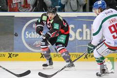 "DEL15 Düsseldorfer EG vs. Augsburg Panthers 28.12.2014 050.jpg • <a style=""font-size:0.8em;"" href=""http://www.flickr.com/photos/64442770@N03/16195341012/"" target=""_blank"">View on Flickr</a>"