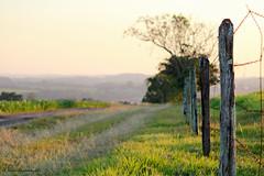Estradinha rural (ricardoyamazaki) Tags: sunset green rural canon fence landscape paisagem prdosol estrada cerca efs55250mmf456is