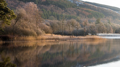 Loch Ard in Winter Morning Light3.jpg (Dylan Nardini) Tags: winter water sunrise scotland 2015 lochard