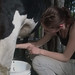 TNS student milking a cow at an organic dairy farm in Argentina