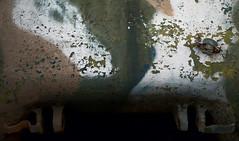 Old Paint (Lorne Thomas) Tags: nikon paint tank decay armor nikkor2870f28 nikon2870f28 nikond800e