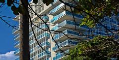 Torre Veiramar I (Carlos Durn Photography/CAD) Tags: departamento torre pisos green arbol cloud nuve balcon san santodomingo sd carlosduran city arquitectura azul republicadominicana hd halt haltadefinicion
