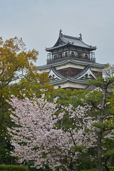Hiroshima 19 (jacksonlife) Tags: a7rii