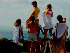 DSCN2487 (isqldb2) Tags: beach island hawaii makapuu makapuulookout