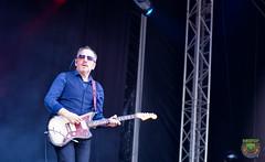Elvis Costello-53