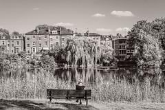A moment in day / Un momento en el da (Emilio A.S.) Tags: london lago descanso paz tranquilidad banco mujer parque pond peace rest calm serenity park bench woman d3100 emilioas