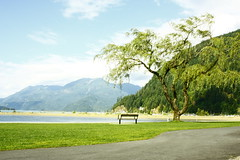 Quietness (Life In Black n' White) Tags: canada green grass clean beach clear cloud sunny tree trees quite quietness happy outdoor