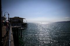 @IMG_4403 (bruce hull) Tags: sanfrancisco california aquarium coast highway chinatown pacific wharf whales coit emabacadero