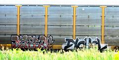 misery - novel (timetomakethepasta) Tags: misery novel freight train graffiti autorack selkirk new york