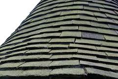 roof (terrible_volk) Tags: redhouse london prerafaelites