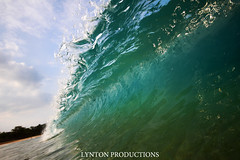 IMG_4659 copy (Aaron Lynton) Tags: canon hawaii waves barrels barrel wave maui 7d spl makena shorebreak barreling lyntonproductions