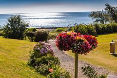 2016-08-06_09-26-40-5D3-0617-ew (mark@langstone) Tags: grounds hotel lawn seaview flowers guests people trees verandah woodland dawlish devon unitedkingdom gbr