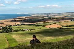 St Catherine's Down (stevedexteruk) Tags: the needles headland tennyson down fields english countryside pastoral isleofwight iow