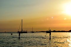 Agosto (ZAP.M) Tags: sunset contraluz silueta sanctipetri chiclana cdiz andaluca espaa flickr nikpn nikond5300 mpazdelcerro