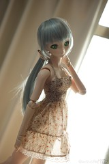 (mauserM712) Tags:     hatsunemiku dollfiedream dds volks d810 nikon nikkor 2470mm f28 vrii