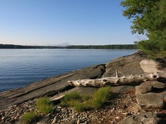 other side of the island we're camped on (Gillian Walker) Tags: crotch lake ontario canoeing camping summer labour day 2016