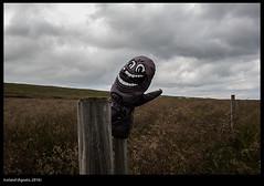 Untitled / Iceland (august, 2016) (buiobuione) Tags: kirkjufellmountain skaftafellicecave vatnajökullnationalpark bluelagoon gullfosswaterfall waterfall lakemyvatn skaftafellpark jökulsárlón svartifoss ásbyrgi þingvellirnationalpark alþingi drekkingarhylur lagarfljót hornstrandirnaturereserve seljavallalaug reynisfjara hekla iceland island islanda buiobuione different point view